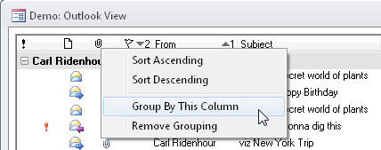 Example of grouping in MS Access grid control